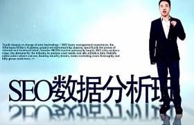 SEO新手基础入门教程(十七节)